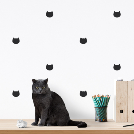 Cica falmatrica fekete